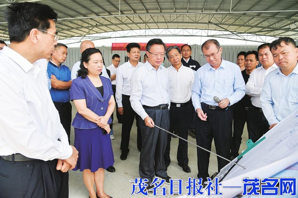 许志晖袁古洁到滨海新区调研检查重点项目建设进展情况