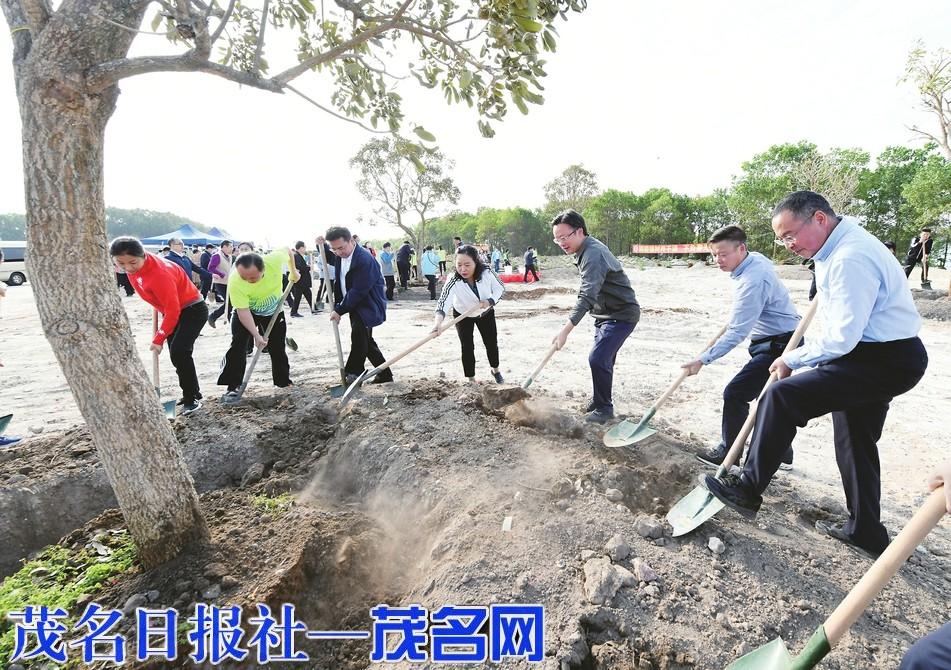 许志晖袁古洁刘芳带头参加义务植树活动